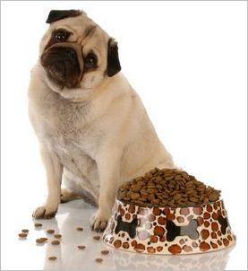 Состав корма для собак