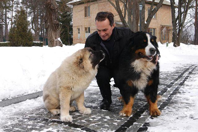 Зоопсихолог для собаки