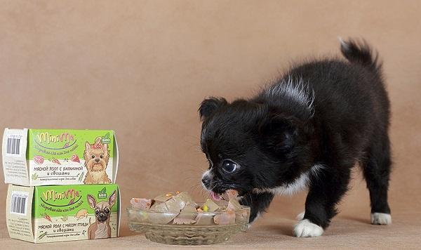 Меняем рацион питания для щенка