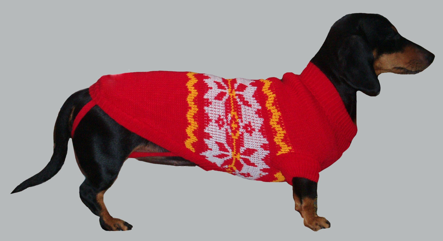 свитер на таксе