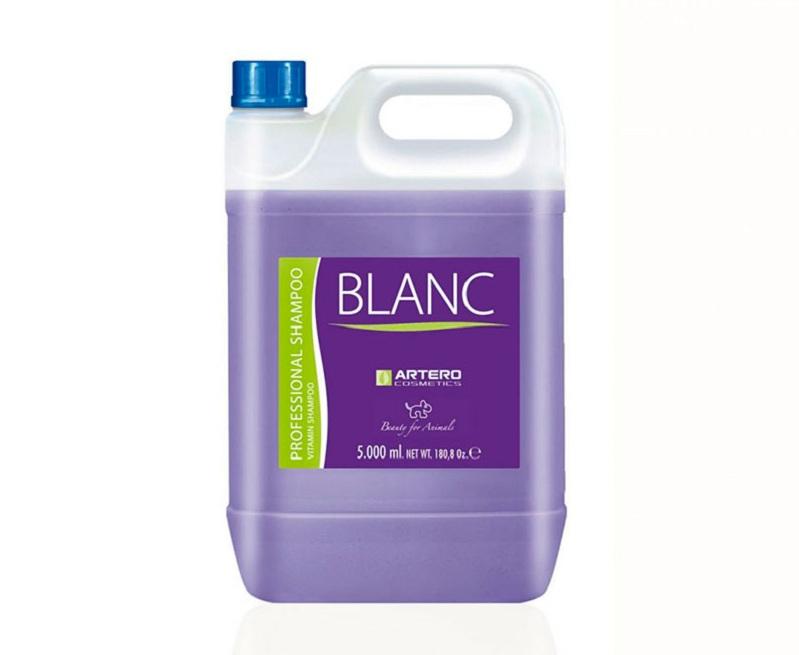 Artero Blanc - бутыль с объемом 5 л
