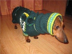 одежда для таксы вязание