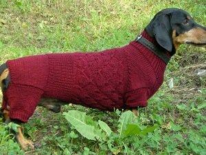 выкройки одежды для собак таксы