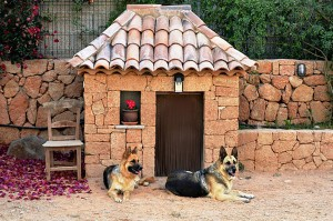 Будка для собак