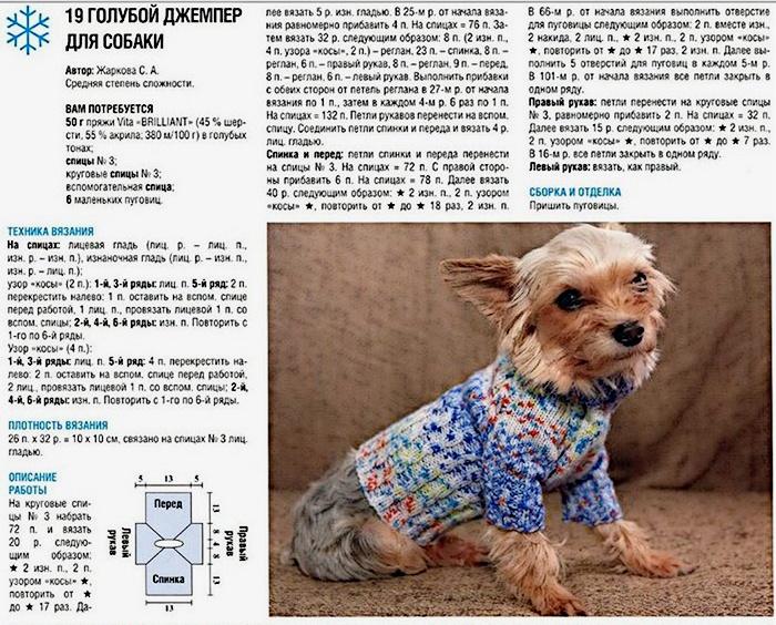 Схема вязания одежды для собаки своими руками